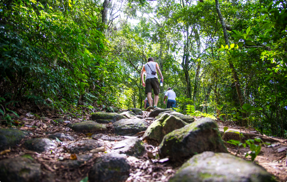 The trek up to the top of Pedra Bonita is mostly under the shade of trees and takes about 30 minutes (Photo: Rio 2016/Alex Ferro)