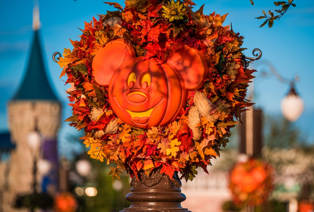 This Autumn, Walt Disney World Resort guests can enjoy many WonderFALL experiences at each of the four theme parks and at Disney Springs. From tasty sips and small bites at the Epcot International Food & Wine Festival to treats without tricks at Mickey's Not-So-Scary Halloween Party at Magic Kingdom Park to after-dark exploring at Disney's Animal Kingdom to out-of-this-world Star Wars fun at Disney's Hollywood Studios, this fall season is filled with excitement at Walt Disney World Resort. (Tom Bricker, photographer)