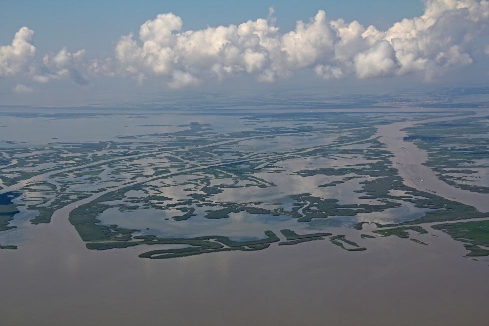 mississippi_river_mouth