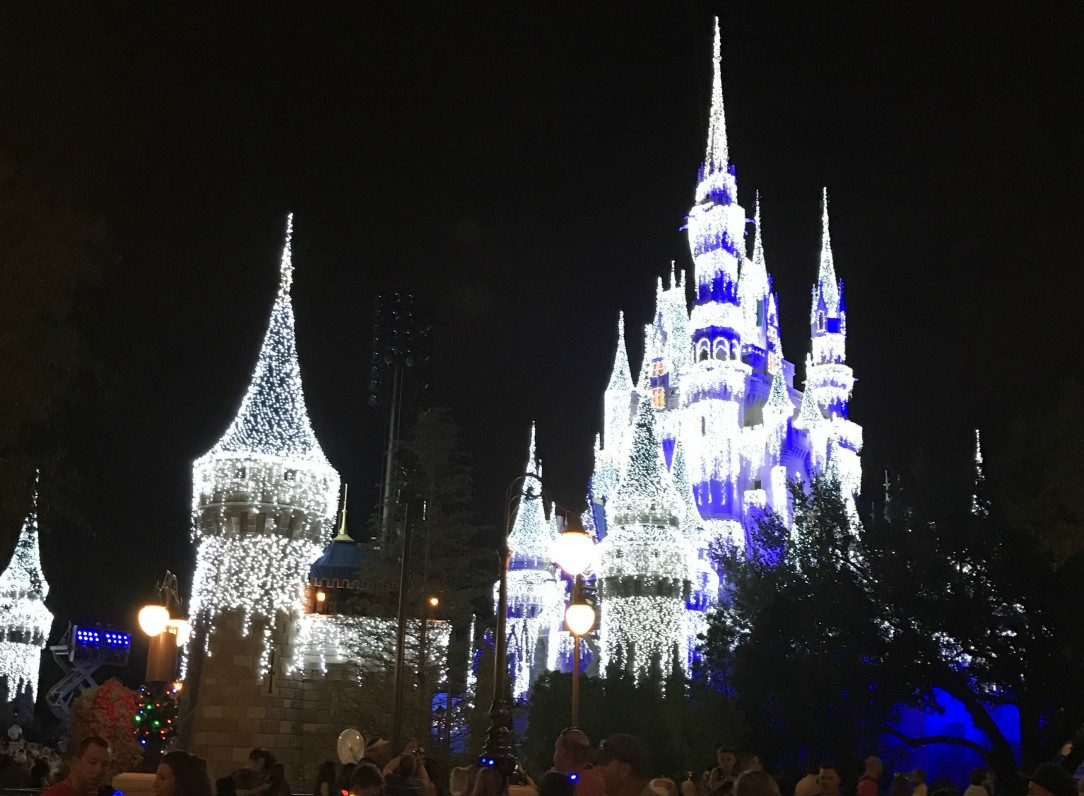 Disney World Castle Christmas 2016